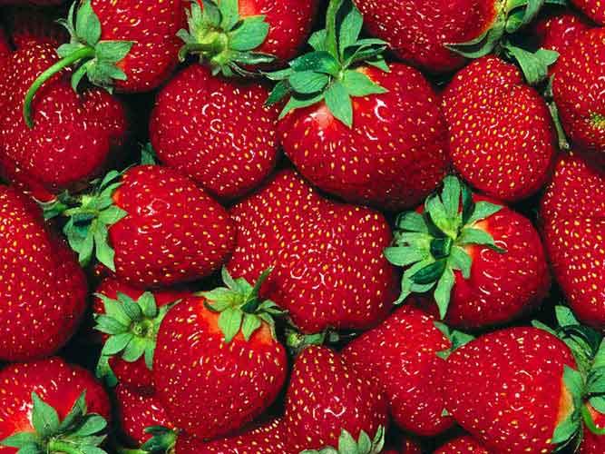 Красного цвета фрукты